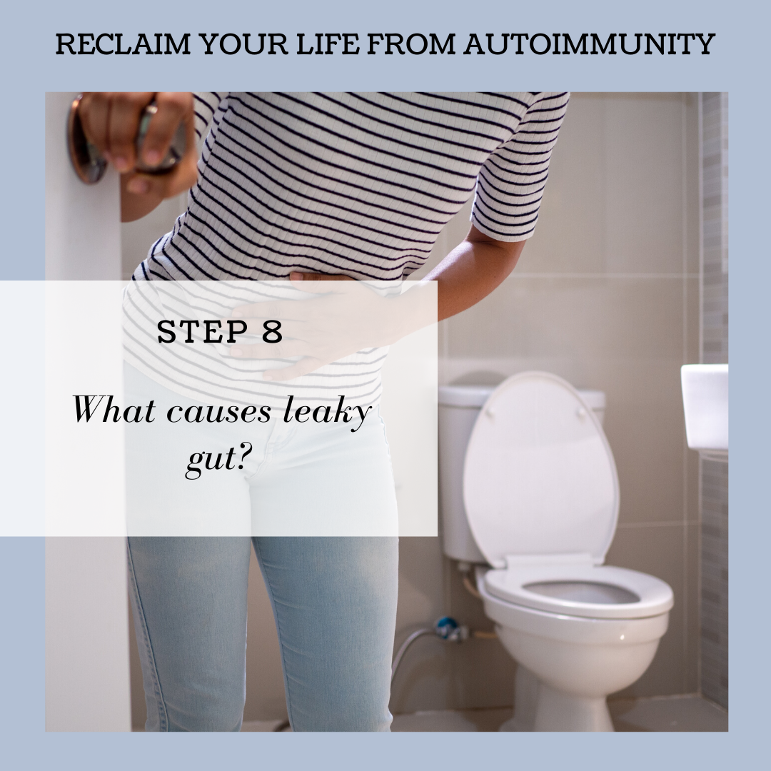 STEP 8: UNDERSTANDING WHAT CAUSES LEAKY GUT.