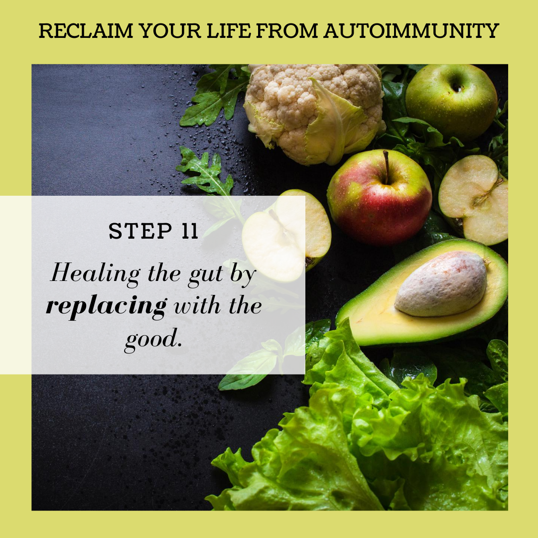 STEP 11: HEALING THE GUT BY REPLACING WITH THE GOOD